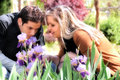 Young couple smelling a purple lilies in a park Royalty Free Stock Photo