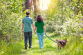 Young couple walking with dog in the forest holding hands and their Royalty Free Stock Photography
