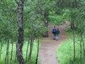 Joven bosque