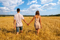Young couple walking through wheat field happy together Stock Image