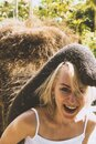 Young elephant place his trunk on woman head in Bali island Royalty Free Stock Photo