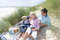 Young family having picnic at beach Royalty Free Stock Photo