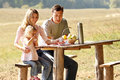 Young family having a picnic in nature Royalty Free Stock Photo