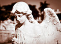 Young female angel in sepia shades Royalty Free Stock Photo