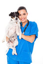 Young female veterinarian holding dog isolated white background Stock Photo