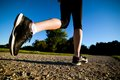 Young fit woman does running jogging training in a park at summer sunny day legs close up Royalty Free Stock Photos
