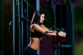 Young fitness woman execute exercise with exercise machine cable crossover in gym horizontal photo Stock Image
