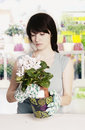 Young florist Stock Photos
