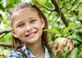 Young girl in an apple orchard smiling collects the apples from tree Stock Photo