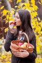 Young girl in autumn park with a basket of apples beautifulgirl Royalty Free Stock Images