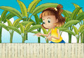 A young girl at the banana plantation illustration of Royalty Free Stock Photography