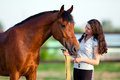 Young girl and bay horse outdoor Royalty Free Stock Photo