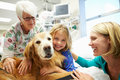 Young girl being visited in hospital by therapy dog looking to camera smiling with mother and volunteer Royalty Free Stock Photo