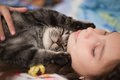 Young Girl and Cat Taking a Nap Royalty Free Stock Photo
