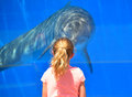 Young girl with dolphin looking fact to face at in tank in marineland st augustine florida Royalty Free Stock Images