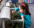 Young Girl Feeding Fish in Fish Tank. Royalty Free Stock Photo