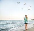 Young girl are feeding seagulls at beach Stock Image