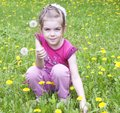 Young girl in a field of dandelions Royalty Free Stock Image