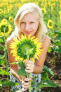 Young girl in the field of sunflowers Stock Photos