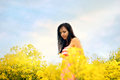 Young girl on the field with yellow flowers Sun rays and blue sky Royalty Free Stock Photo