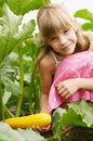 The young girl is in the garden Royalty Free Stock Photo