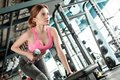stock image of  Young girl in gym healthy lifestyle leaning on bench lifting dumbbell doing arm exercise motivated