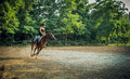 Young girl jockey and racehorse in training rider coached the arena horse riding friendship trust partnership Royalty Free Stock Image