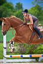 Young girl jumping on horse chestnut riding horseback Royalty Free Stock Images