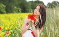 Young girl with long hair in poppies field Royalty Free Stock Photography