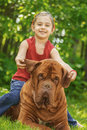 Young girl and mastiff smiling astride big dog of breed french dogue de bordeaux Royalty Free Stock Image