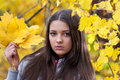 Young girl in a park in autumn with yellow leaves Stock Photos