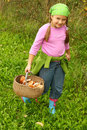 Young girl picking mushrooms Stock Image