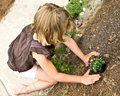 Young Girl Planting Flowers Stock Photos