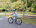 Young girl riding bike a a in early fall Stock Photography