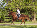 Young girl riding horse Stock Photos