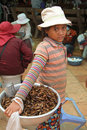 A Young Girl Selling Dried Grasshopper Royalty Free Stock Photos