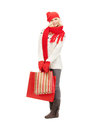 Young girl with shopping bags picture of Stock Photography