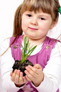 Young girl with small plant Royalty Free Stock Photos