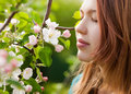 Young girl smelling blossoms Royalty Free Stock Photo