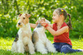 Young girl and two fox terriers little with dogs of breed terrier on green lawn Royalty Free Stock Image