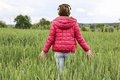 Young girl walking through grain field photo of woman enjoying music and the Royalty Free Stock Image