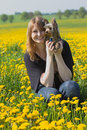 Young girl with yorkshire terrier in the dandelion meadow smiling her arms sitting Royalty Free Stock Image