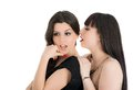 Young girlfriends sharing their secrets, studio shot Royalty Free Stock Photo