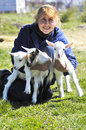 Young goats and woman in pasture Royalty Free Stock Photos