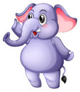 A young gray elephant illustration of on white background Royalty Free Stock Images