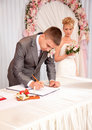 Young groom signing wedding contract portrait of Royalty Free Stock Photos