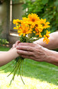 Young hand giving a flowers to senior s hand child Stock Photography