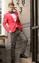 Young handsome stylish man posing indoor Royalty Free Stock Photo