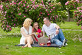 Young happy family having picnic outdoors