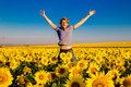 Young happy man have fun on the field with sunflowers at sunset. Royalty Free Stock Photo